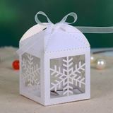Snow Cut-out Cuboid Favor Boxes With Ribbons (Set of 12) (050026819)