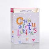 """Congratulations"" Cuboid Favor Bags With Ribbons (Set of 12)"
