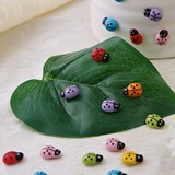 Beetle Shaped Wooden Stickers (Set of 100 pieces)
