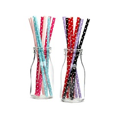High quality paper Straws (Set of 25)